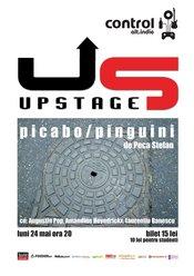 Teatru in Control: picabo/pinguini, de Peca Stefan