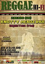 Reggae Hi-Fi Live @ Suburbia