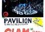Pavilion: 10 ani de rezistenta culturala @ Control