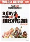 O zi fara mexicani