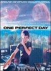 O zi perfecta