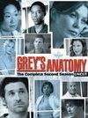 Anatomia lui Grey