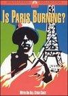 Arde Parisul?