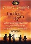 Les tortues volent aussi