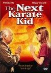 Un alt Karate Kid