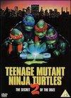 Testoasele Ninja adolescente II