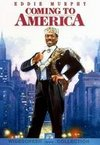 Un print in America