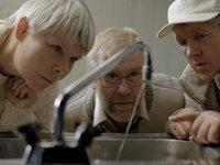 Timishort 2010 anunta filmele din competitie
